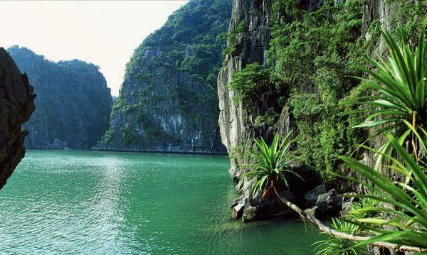Croisière Baie d'Halong Vietnam