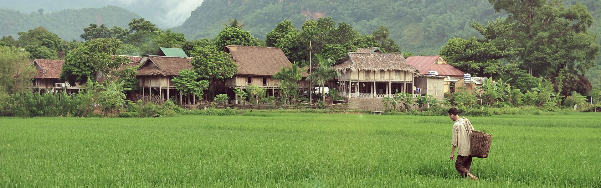 D 233 Couvrez Hanoi Capitale Du Vietnam Lors D Une Excursion